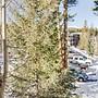 The Grand Breck