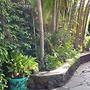 Paradise Palms B and B