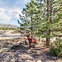 Historic Wilderness Retreat Vacation Home 2 Bedroom