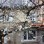 Chambre d'hôtes Le Cerisier