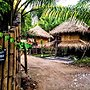 Aoluek Paradise