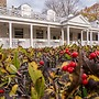 Captain Stannard Bed and Breakfast Country Inn
