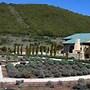 Thorn Hill Vineyards Villa Suite