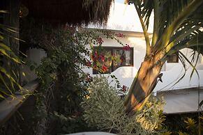 Hotel Kalma 40 Canones Mahahual Mexico Tarifa Minima Garantizada