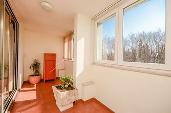 Apartment Snježana