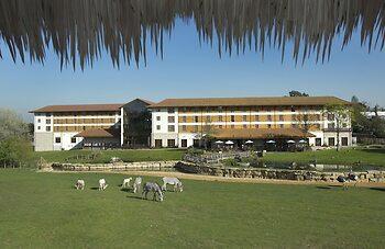 Chessington Safari Hotel